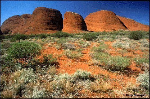 Australie_parc_national_Uluru_Kata_Tjuta