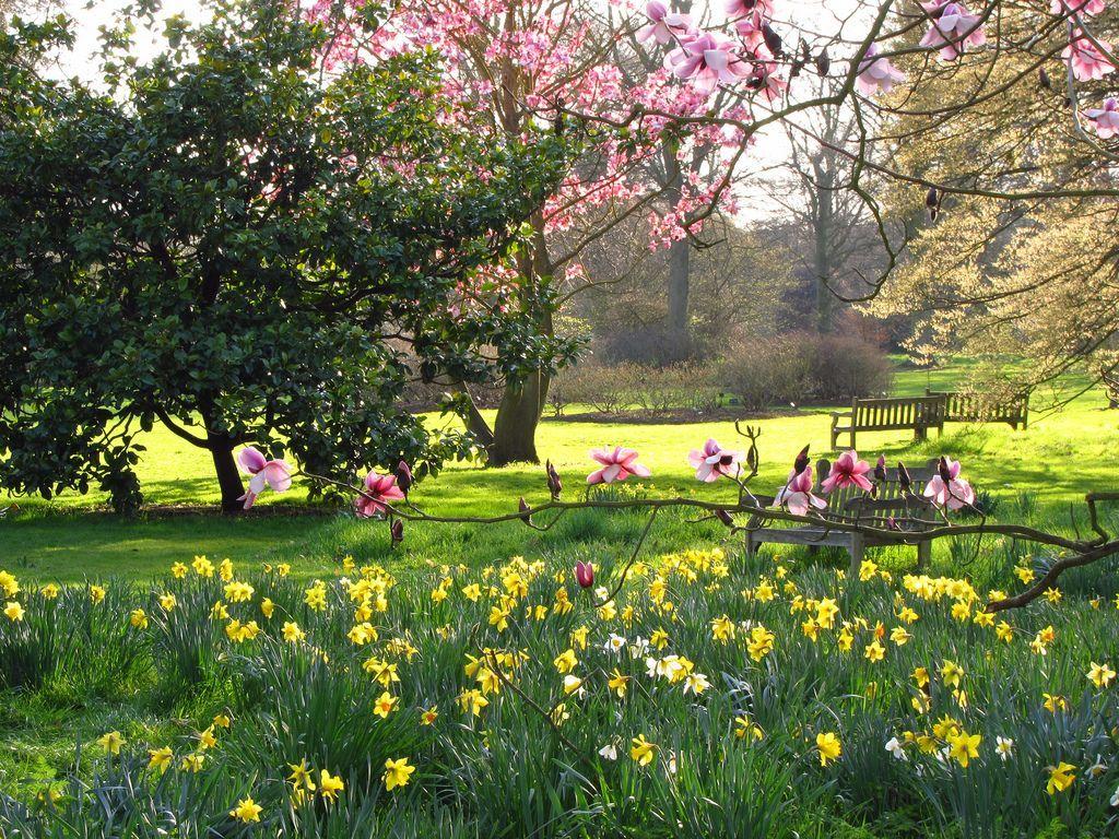 Kews Gardens